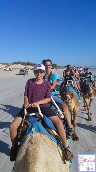 Camel Ride 4