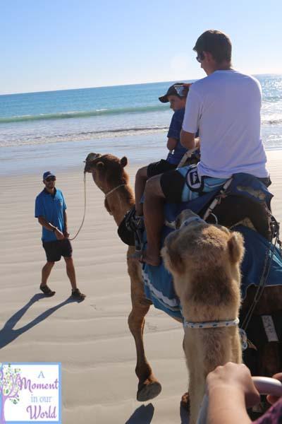Camel Ride 41