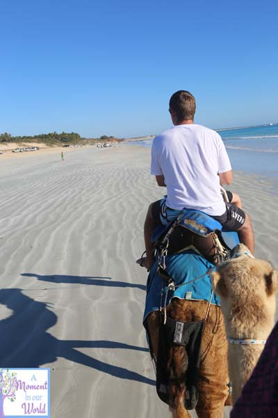 Camel Ride 44