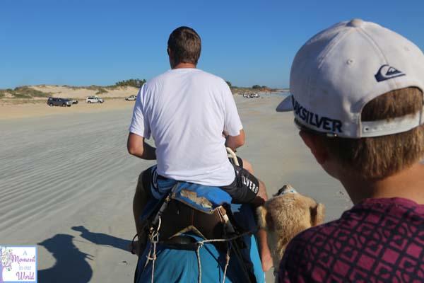 Camel Ride 50