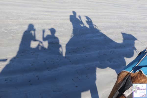 Camel Ride 51