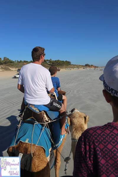 Camel Ride 54
