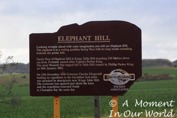 Elephant Hill Lookout 2