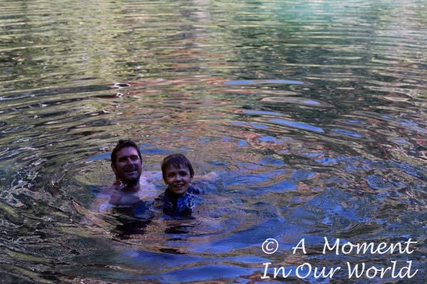 Fern Pool 3