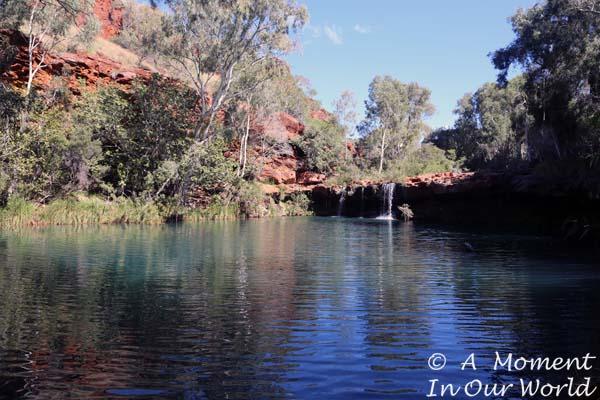 Fern Pool 4