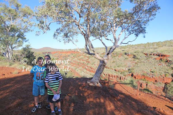 Fortescue Falls Lookout 5