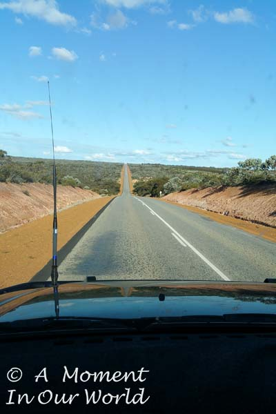Road from Albany to Munglinup