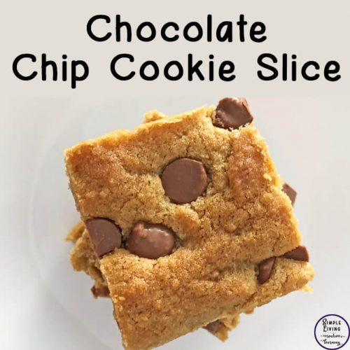 This moist, delicious, and easy to make Chocolate Chip Cookie Slice is a definite must-try for those chocolate and slice lovers!