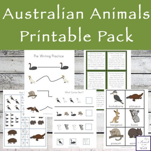 This Australian Animals Printable Pack includes 36 pages of literacy and numeracy activities for young children.