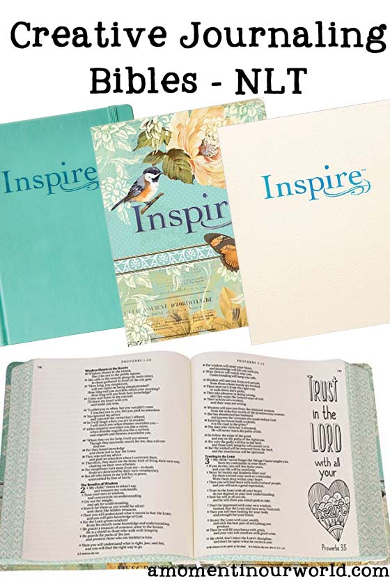 Creative Journalling Bibles a