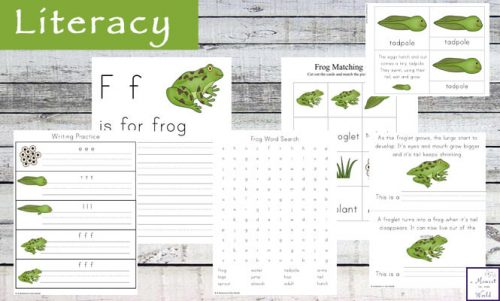 This Frog Life Cycle Activity Pack includes many activities about the life cycle of frogs as well as math, literacy and hands-on activities.