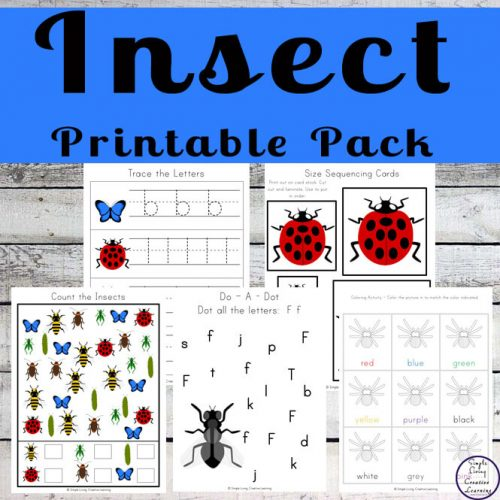 Kids will love this Insect Printable Pack full of fun math and literacy activities.