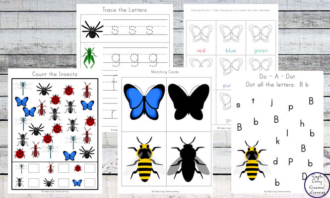 Kids will love this Insect Printable Pack full of fun math and literacy activities.Kids will love this Insect Printable Pack full of fun math and literacy activities.