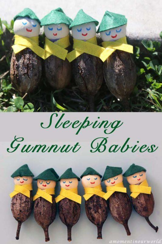 Sleeping Gumnut Babies a
