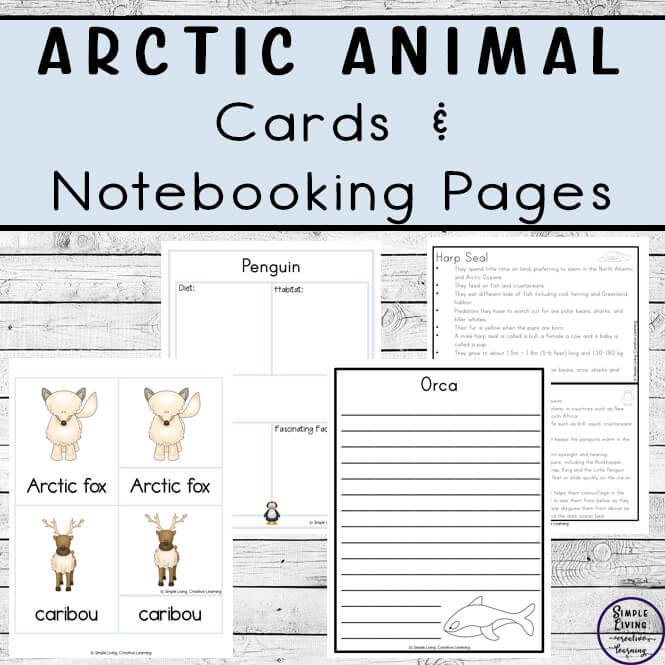 Arctic Animal Cards and Notebooking Pages