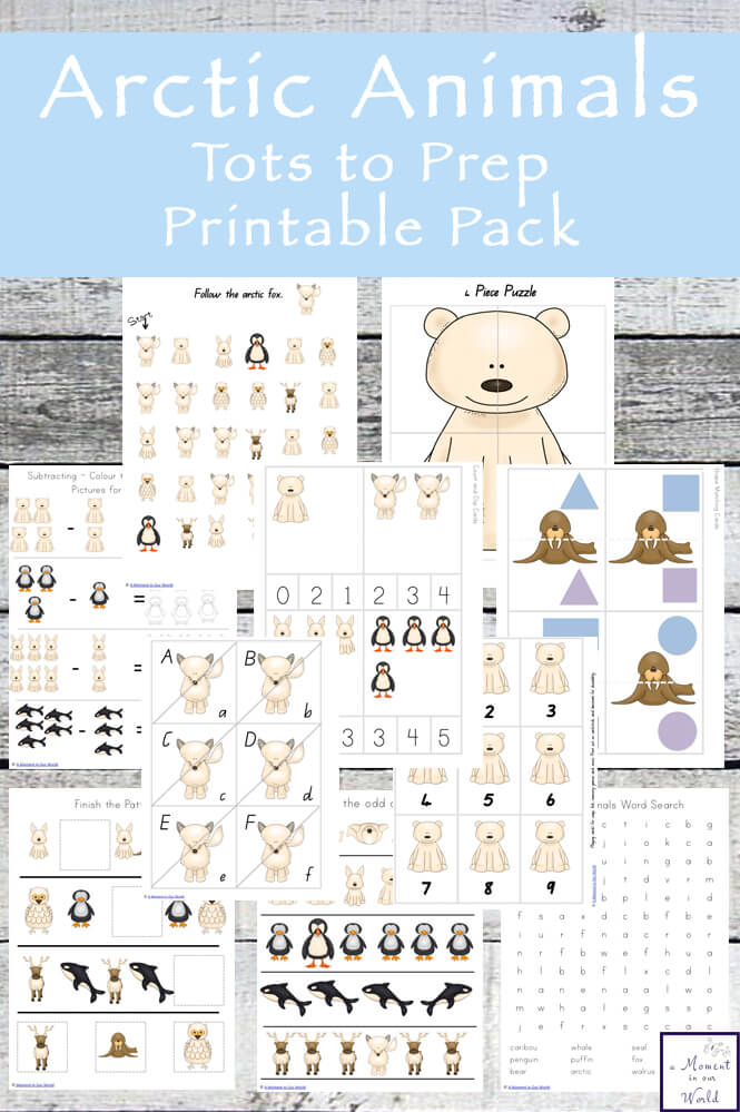 This Arctic Animals Tots to Prep Printable Pack is aimed for children in the 2-8 age group.