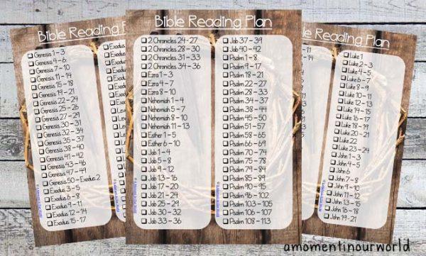Bible Reading Plan b