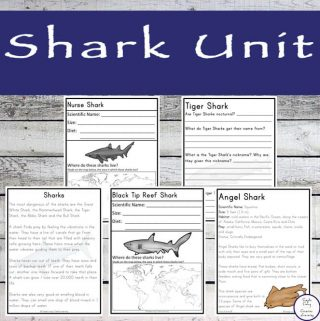 This awesome, 40+ page printable SharkUnit, contains information forten of the most popular sharks.