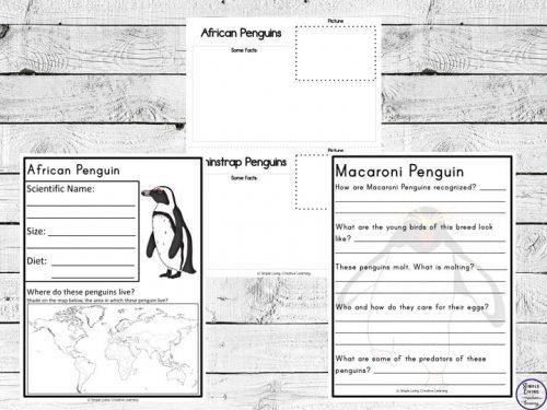penguin study printables