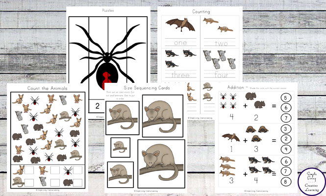 This Australia Animals Printable Pack is aimed at children in preschool and kindergarten; filled with fun literacy and math activities with an Australian Animal Theme.