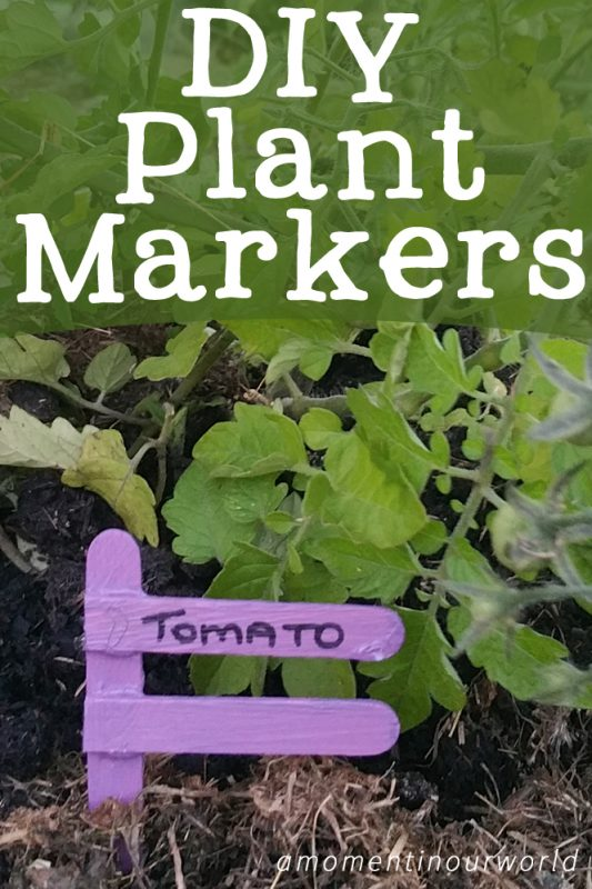 diy-plant-markers