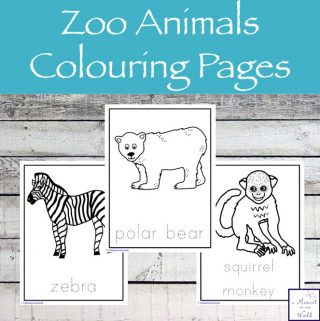 These Zoo Animals Colouring Pages are not only pages for your child to colour, but they can also be great conversation starters and great for writing prompts.