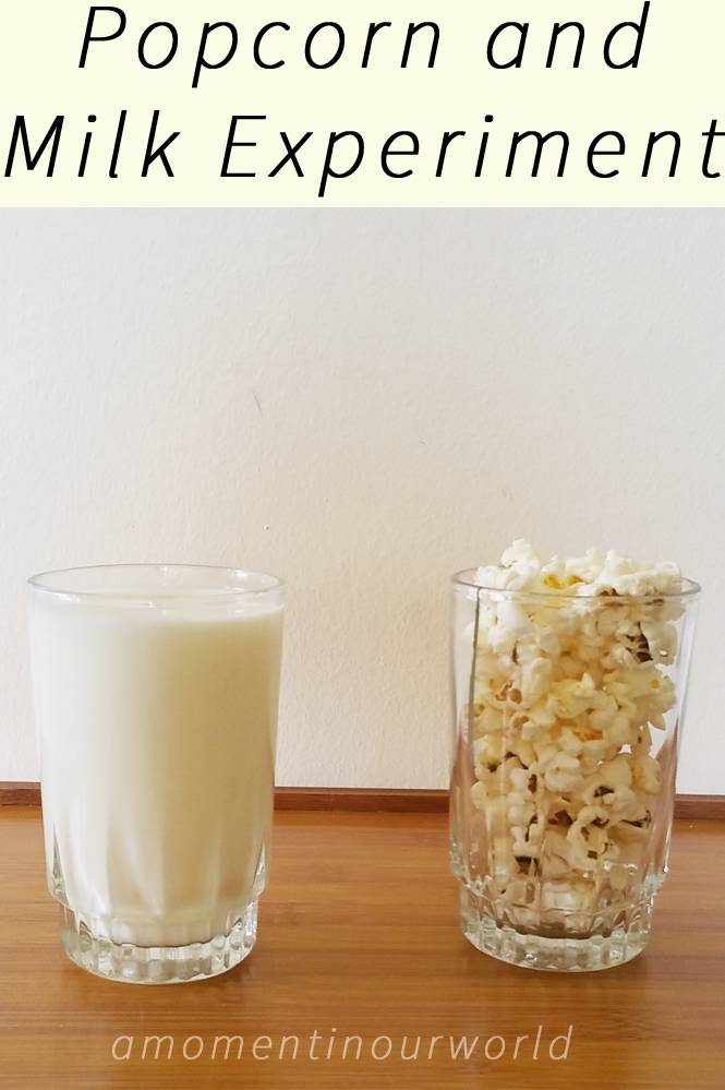 Popcorn and Milk Experiment {From Farmer Boy}