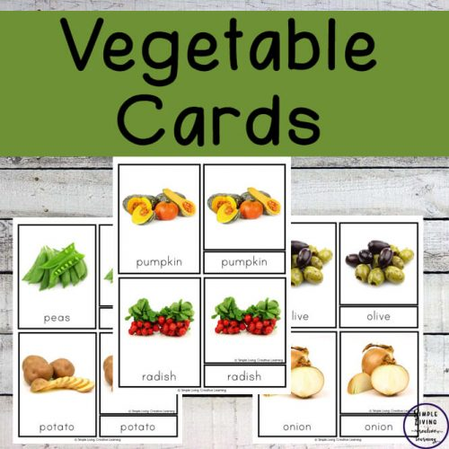 With these vegetable cards, children will be ablt to learn to recognise & spell thirty-three different vegetables through a variety of hands-on activities.