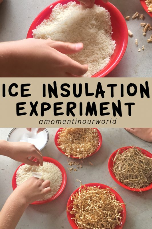 This is a fun ice insulation experiment and it goes well with the book Farmer Boy by Laura Ingalls.