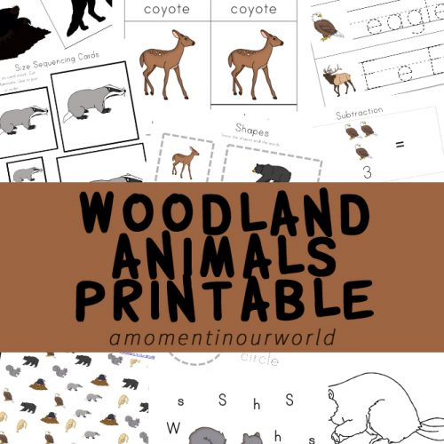 This woodland animals printable pack is full of fun, and educational activities and the most adorable woodland creatures.