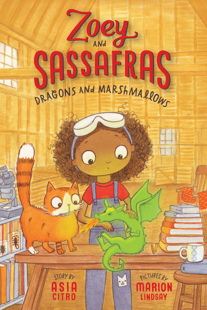 Great new STEM series for beginner readers: Zoey and Sassafras with a printable Scientific Journal.