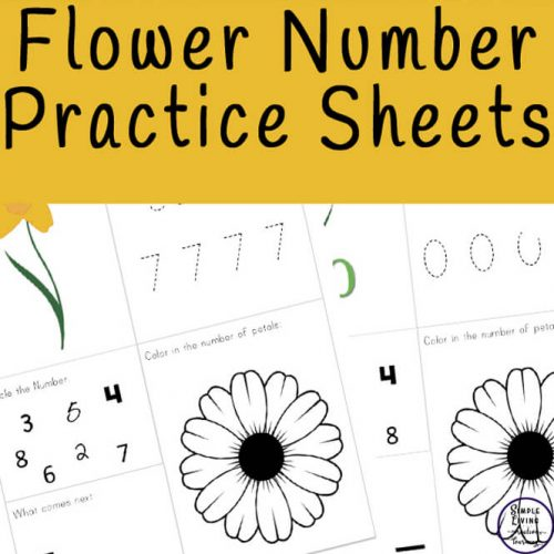 Learn to count and write numbers from 0 - 10 is made fun with these flowernumber practice sheets. They are also great for reviewing!