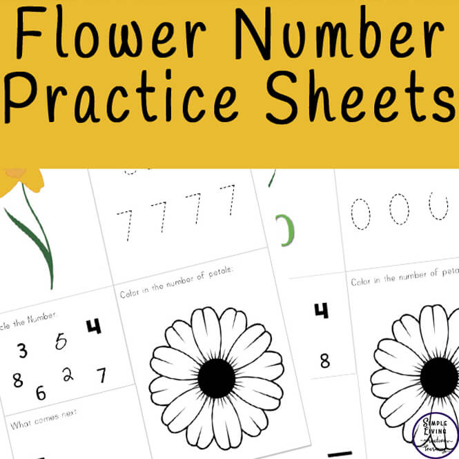 Learn to count and write numbers from 0 - 10 is made fun with these flower number practice sheets. They are also great for reviewing!
