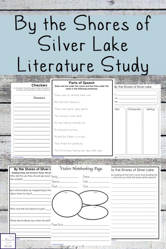 creative story the lake Short stories moral stories  once upon a time, there lived a swan near a lake in a forest one night, an owl saw the swan gliding on the lake in the moonlight he.