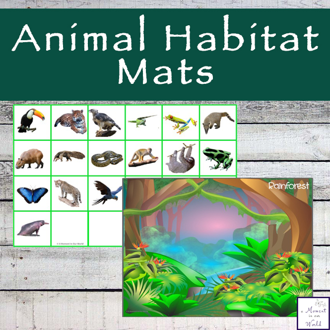 Animal habitat mats and cards