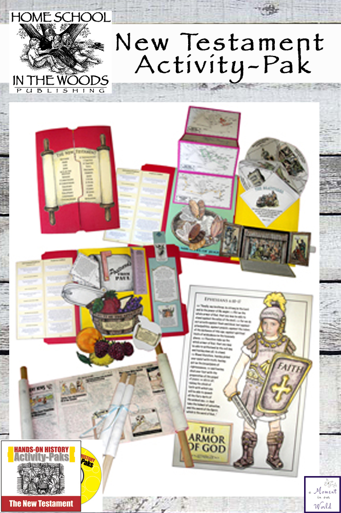 This New Testament Activity Pack is a fun, hands-on approach to learning history.