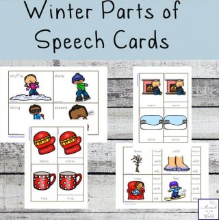 These Winter Parts of Speech Cards are can be used in a variety of ways to teach your children about nouns, verbs and adjectives.