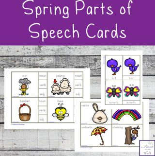 Spring Parts of Speech Cards