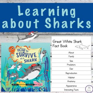 Learning about Great Whites with 'How to Survive as a Shark'