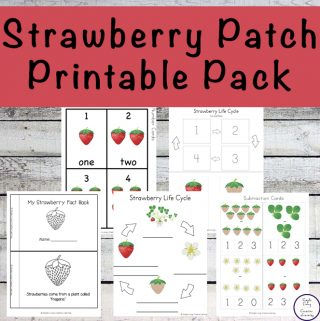 Strawberry Patch Printable Pack