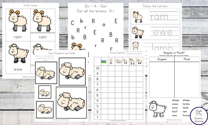 Sheep Life Cycle Printable Pack F Simple Living Creative Learning