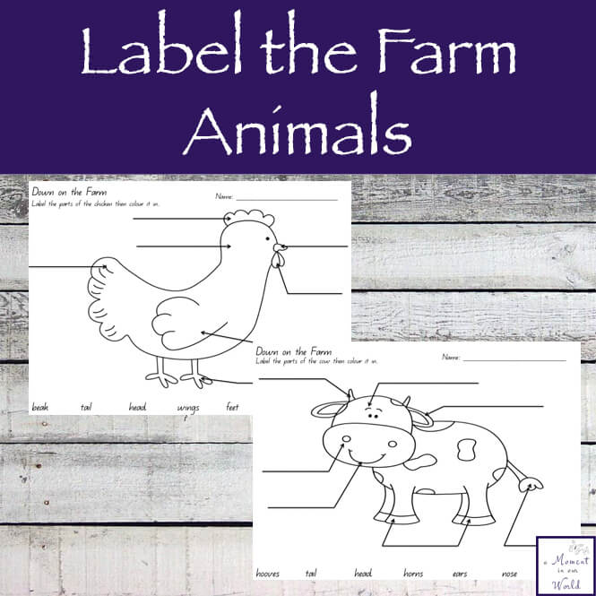 Have fun learning the parts of some of the more popular farm animals with this Label the Farm Animals Printable Pack.
