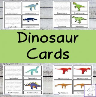 Learn about about 25 different species of dinosaurs with these fun Dinosaur Cards.