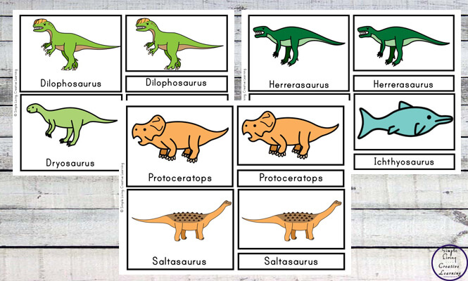 FREE} Printable Dinosaur Cards - Simple Living. Creative Learning