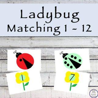 Ladybug Matching from 1-12