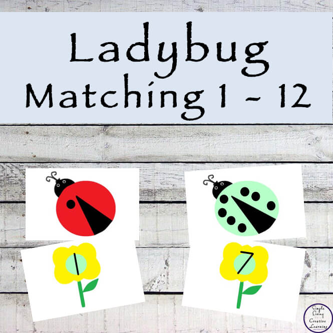 These Ladybug Counting Matching Cards are a great way for children to learn their number recognition as well as counting.