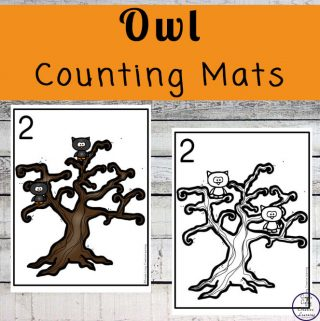 Focusing on the numbers 1 - 20, these Owl Counting Mats are a fun, hands-on math activity that preschoolers and toddlers will love.