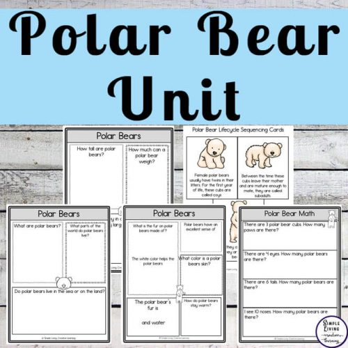 Polar bears are able to survive in freezing cold temperatures and swim in cold waters. You will learn lots more about creatures in this Polar Bear Unit.