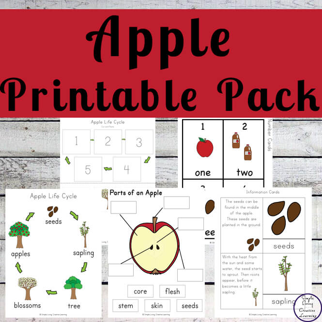 Apple Printable Pack