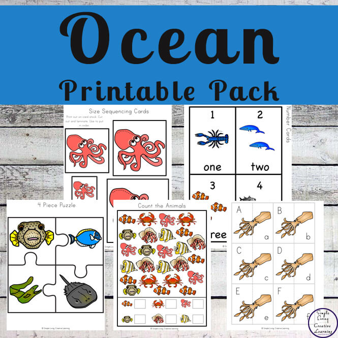 This Ocean Animals Printable Pack focuses on skills that preschoolers and kindergarteners need to know while having a fun ocean animal theme.